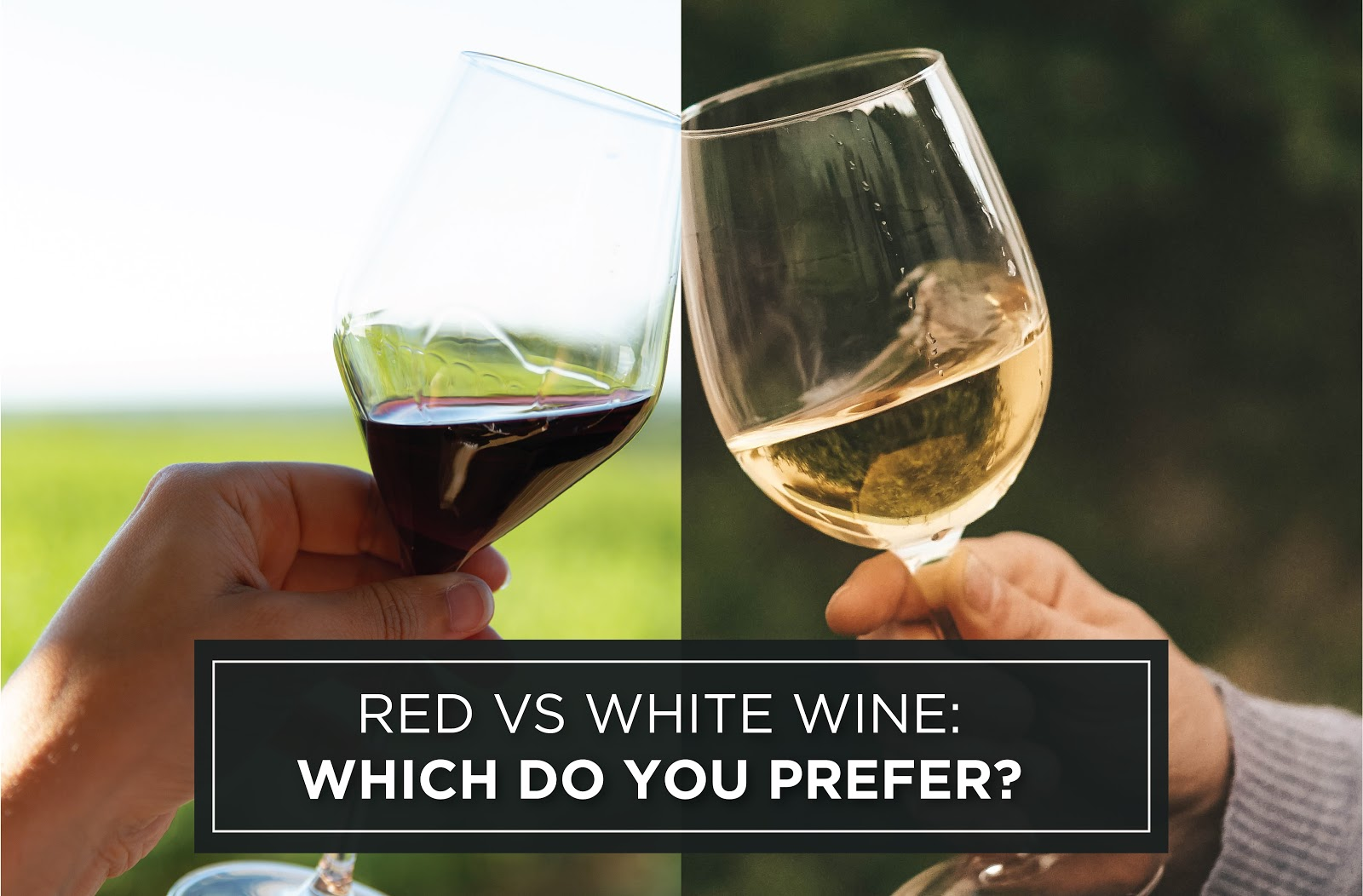 Red vs White Wine: Which Do You Prefer?
