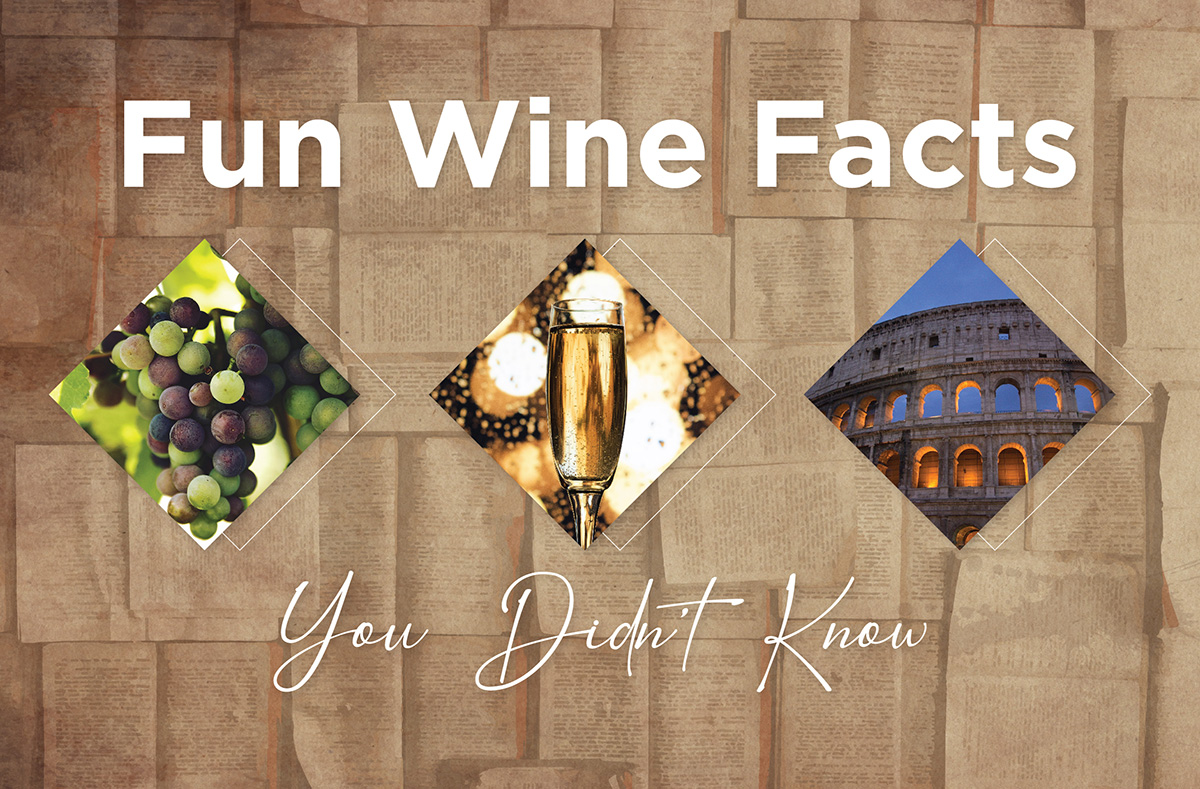 Fun Wine Facts You Didn't Know - Legacy in a Glass